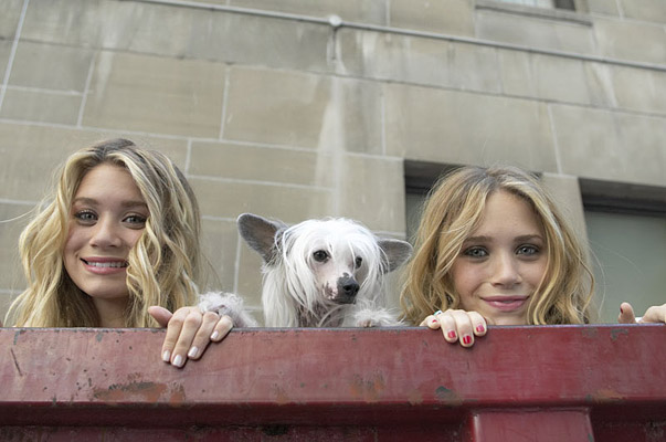 Random things I realized while re-watching 'New York Minute' almost 15 yearslater